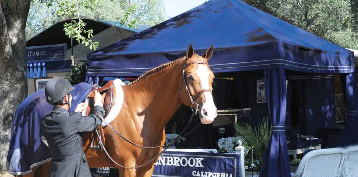 Bringing Luxury and Comfort to The Horse Show World